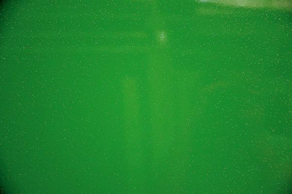 Polyhaube und Bug Yellow Green Metallic