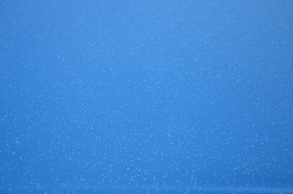Polyhaube und Bug Signal Blue Metallic